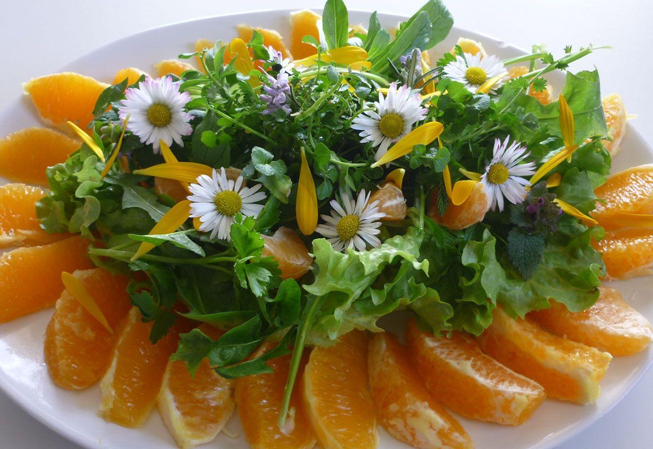 Premières salades sauvages à l'orange