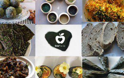 Les algues fantastiques – Ebook de crusine