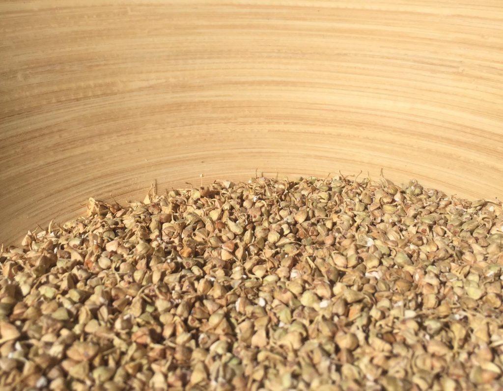Le sarrasin naturellement sans gluten est une graine nutritive et énergétique, riche en protéines et en magnésium. Réchauffant, il est idéal lorsque les températures baissent ! Le croustillant du sarrasin germé et déshydraté s'invite généreusement dans nos plats d'automne et d'hiver qu'ils soient sucrés ou salés (granolas, salades, soupes, mueslis, compotes, pâtes à tarte...)