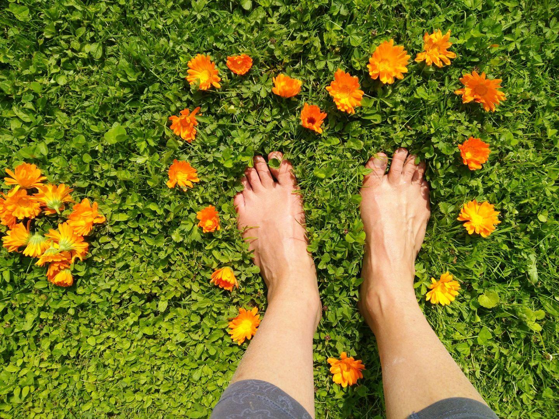 Reposons les pieds sur terre et relions-nous !